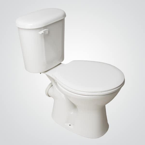 Descarga vaginal blanca inodoro